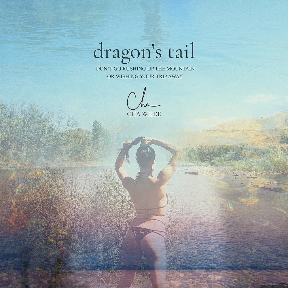 Cha Wilde - Art Cover - Dragons Tail 5_WEB.jpg