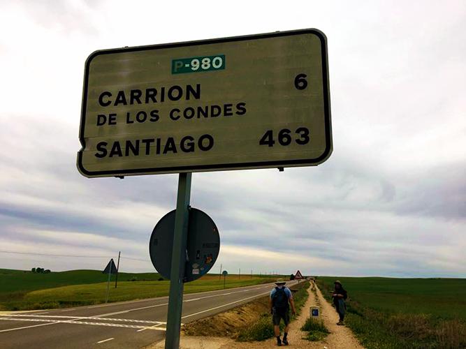carrion 6k.jpg