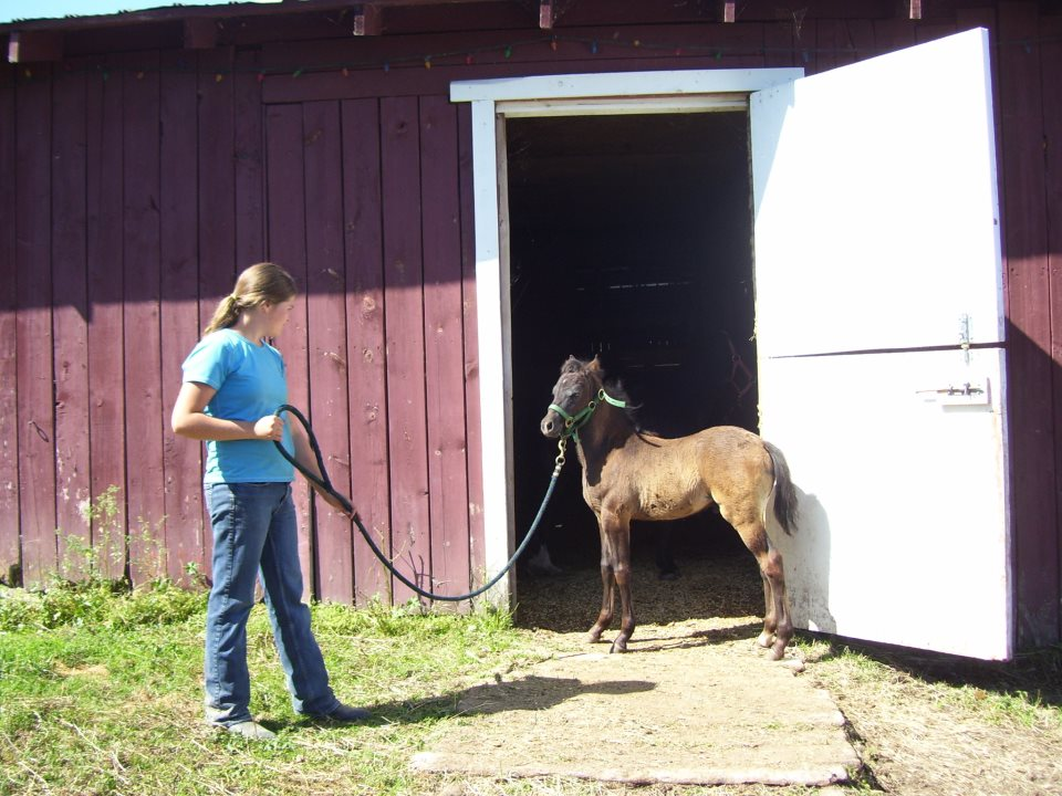 Double M Ranch in Quesnel 2.jpg