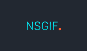 NSGIF-header.png
