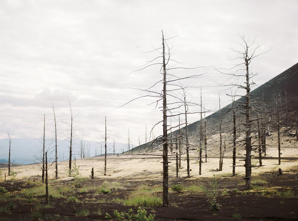 Kamchatka-177.jpg