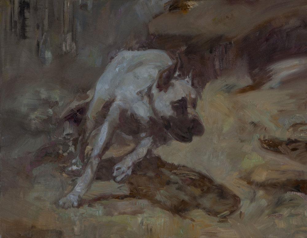 Høst hunden