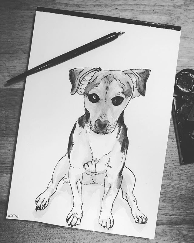 Pupper • • • #jackrussel #puppy #puppyportrait #dog #dogportrait #art #watercolor #watercolour #illustration