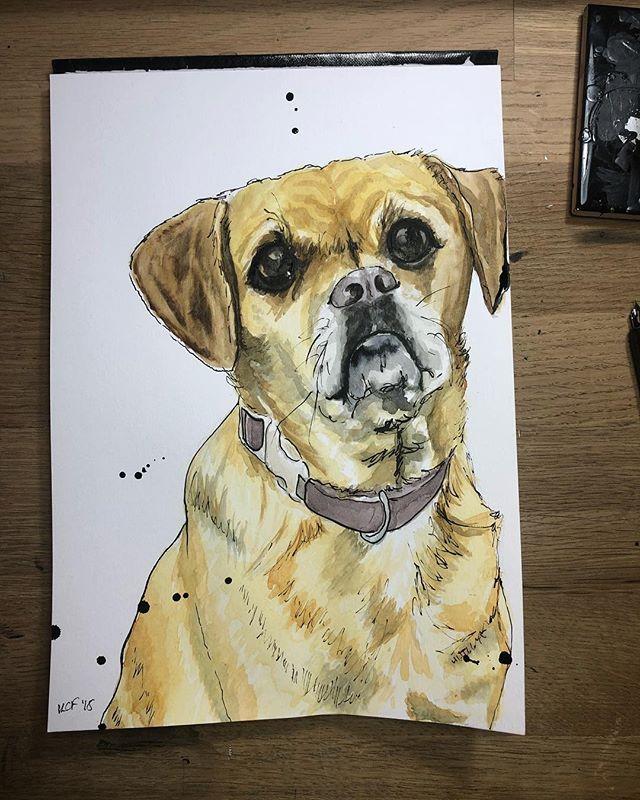 🐶 • • • #illustration #watercolor #dippen #watercolour #puggle #pupper #puppy #doggo #dog #dogportrait