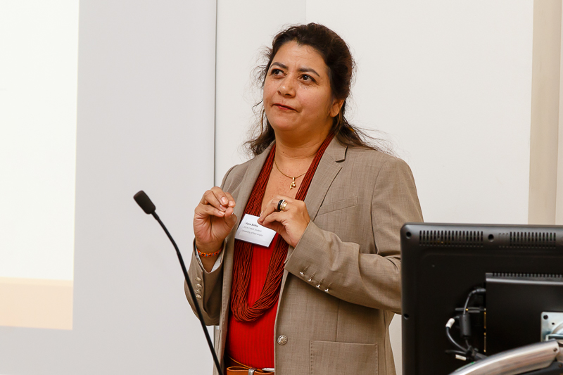 Vera Da Silva Sinha, (University of East Anglia) - Fieldwork experiences through oral presentation accompanied by video recordings of everyday life in the indigenous communities in Brazil.