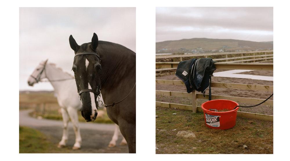 Bjorn Larsen & Tore Skarpnord | Promote Shetland