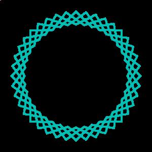 BORAIE-logo (1).png