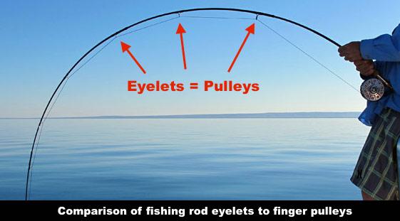 eyeletes=pulleys.jpg