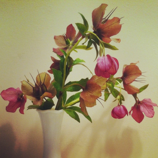 flowers+021.jpg