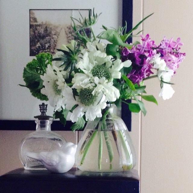 #Viburnum #Scabiosa #Lilac