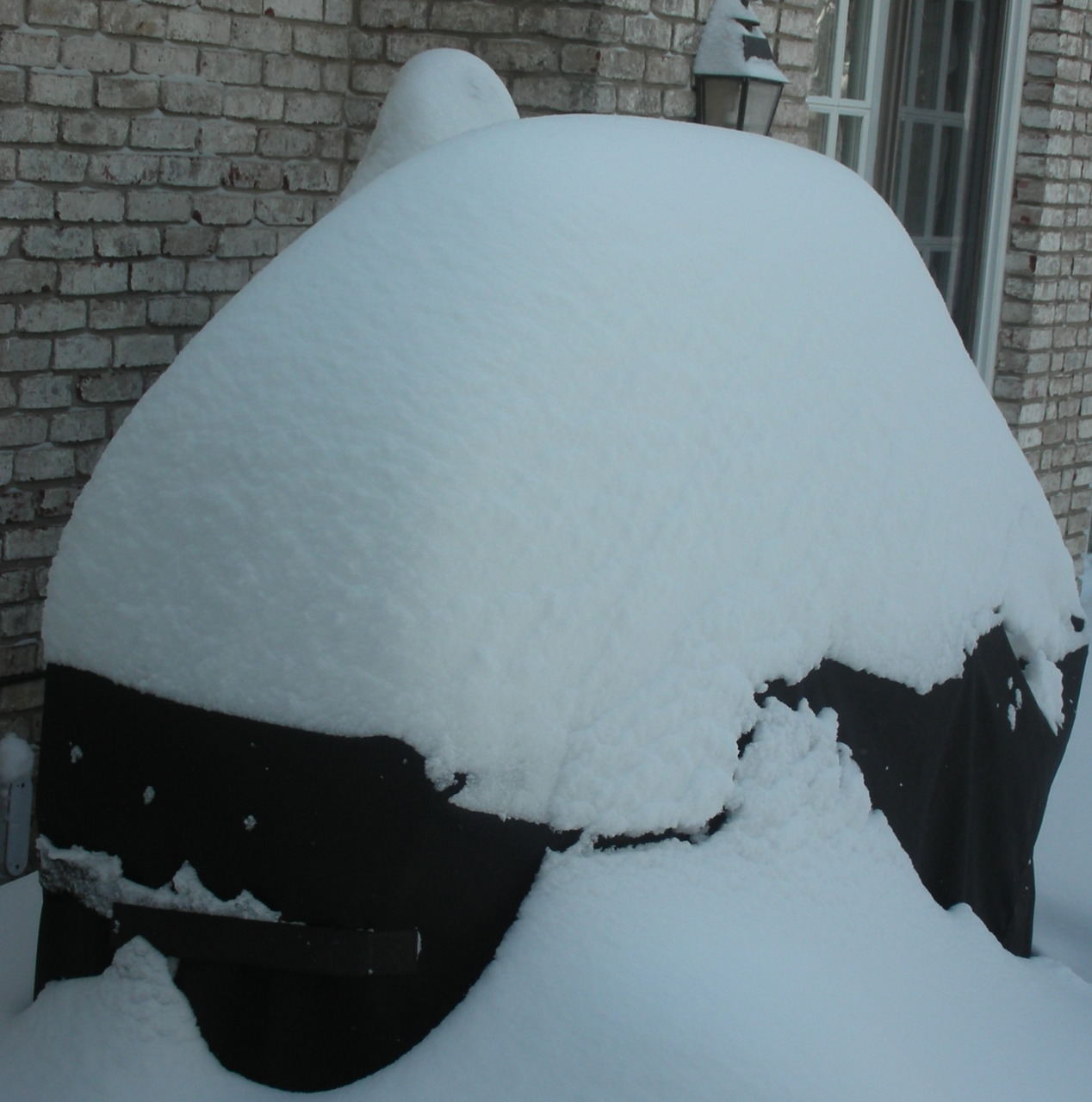 Last summer when we put up the big lights for the backyard I thought we'd be able to use our grill during the winter, when it gets dark at dinner. I forgot that there might be 12 inches of snow followed by another 9 inches of snow followed by another 12 inches of snow. My grill looks like some kind of prehistoric animal preserved for eternity in a chunk of white. Besides, I can't even get to it. I can't open the door to the terrace.  Yes I love winter's warming foods. Yesterday we had beef stew and I've also made thick soups and put away osso buco and chicken fricassees and pot roast to unfreeze and have for dinner on busy days.  But sometimes I want something simple and grilled. Like a boneless chicken breast. Or grilled Italian bread sandwich with grilled, marinated skirt steak, tomatoes and mayonnaise. Guess it's the broiler or the grill pan. Good seconds, but not the real thing. Grilled Skirt Steak Sandwich 2 tablespoons olive oil 1 tablespoon red wine vinegar 1 teaspoon Dijon mustard 1 cloves garlic, mashed chopped fresh thyme (or dried) or chopped fresh oregano, to taste 12-16 ounces skirt steak 2 club rolls or hunks of Italian bread, sliced for sandwiches 1/4 cup mayonnaise tomato slices red onion slices  salt and freshly ground black pepper to taste Put the olive oil, red wine vinegar, Dijon mustard, garlic and thyme or oregano in a dish and mix to combine them using a fork. Put the meat on the dish and dredge it in the marinade to coat both sides. Let the meat marinate for at least one hour. Preheat the broiler or grill pan (or an outdoor grill). Cook the meat 2-3 minutes per side, then  cut into 2 equal pieces. Grill the cut side of the bread for a minute to toast the surface lightly. Slather the bread with the mayonnaise. Top with the meat, onion and tomato slices. Sprinkle with salt and pepper if needed. Makes 2 sandwiches