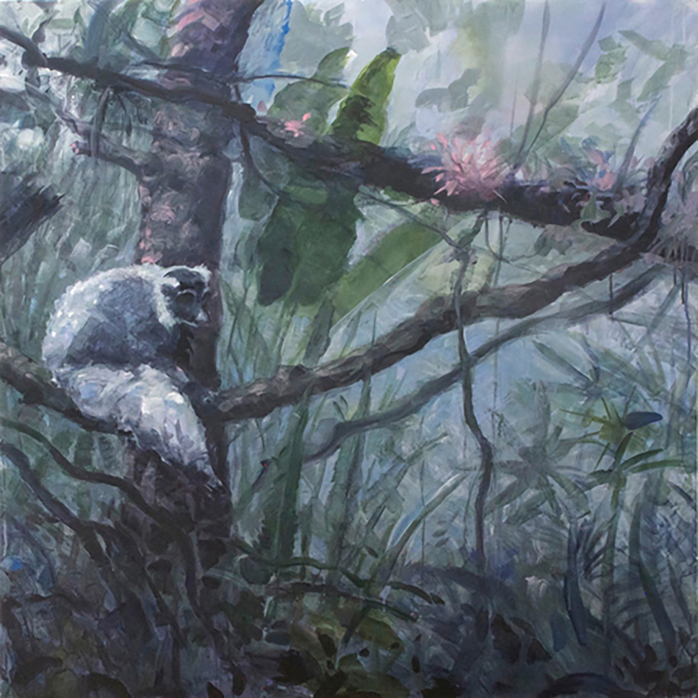 "JUNGLE VINES 1 (lemur) 48X48"", 2011"
