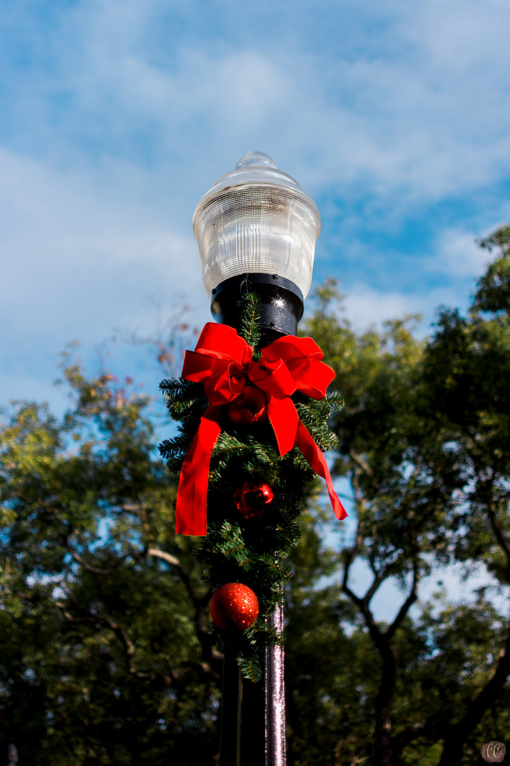 Florida Photo Safari with   Carlie Chew Photography and The Florida Museum of Photographic Arts, Christmas light post in Hyde Park Village