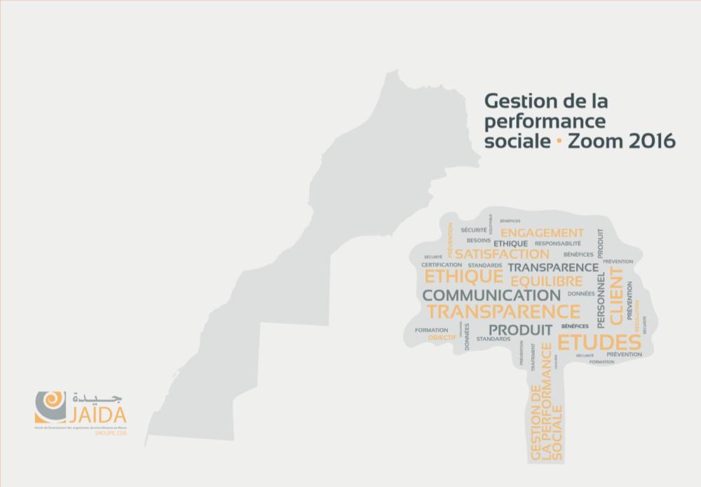 Exemple de benchmarks utilisé par le réseau  JAIDA au Maroc pour dresser son bilan 2015 des éléments clés de Gestion de la Performance Sociale issus des audits sociaux SPI4.