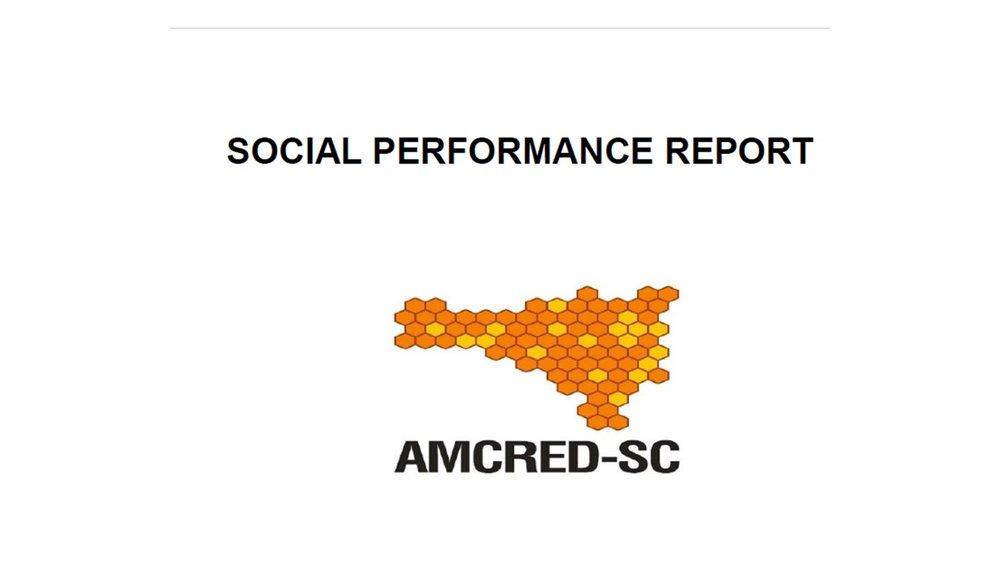 Exemple  de benchmarks utilisés par le réseau Brésilien-  AMCRED , pour produire le rapport régional de Gestion de la Performance Sociale