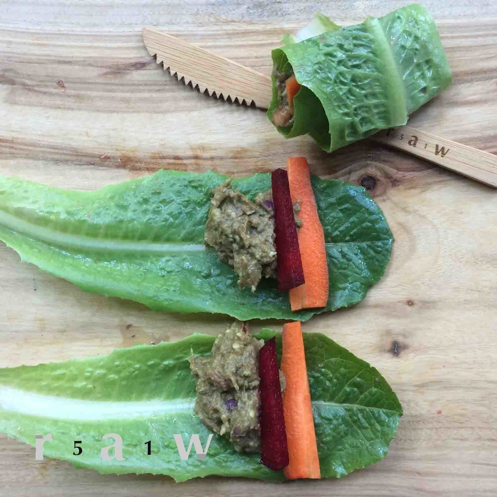 raw-food-diet-salad-filled-lettuce-wrap-guacamole-recipe-51raw