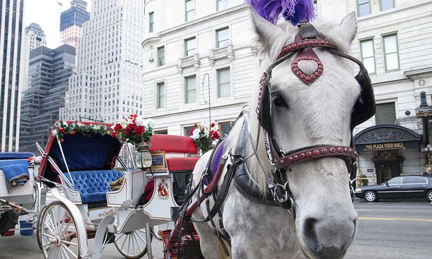 Mayor de Blasio wants to ban the use of horse-drawn carriages in Central Park by the end of the year.   (Natalie Fertig/WNYC)