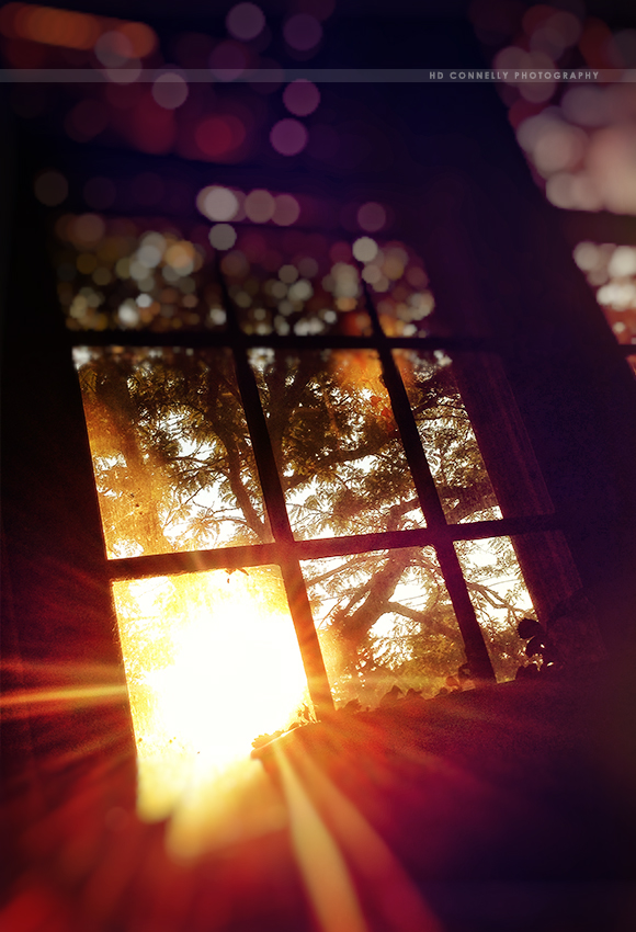 light2w.jpg