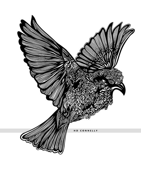 BIRD_8w.jpg
