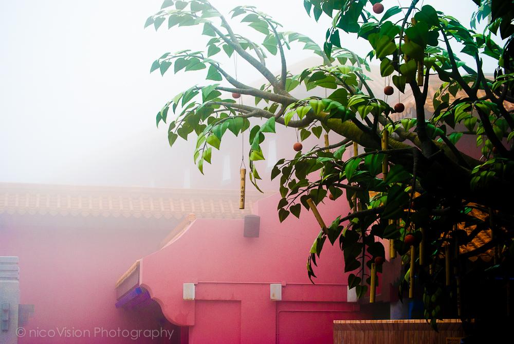 HK Architecture-187.jpg