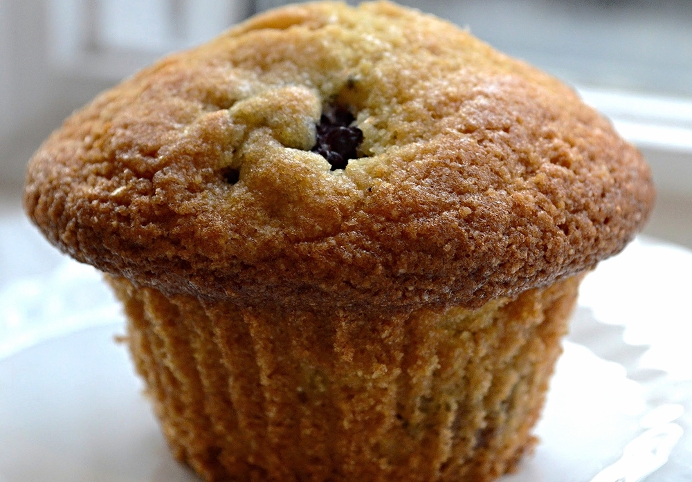 Blackberry Corn Muffins