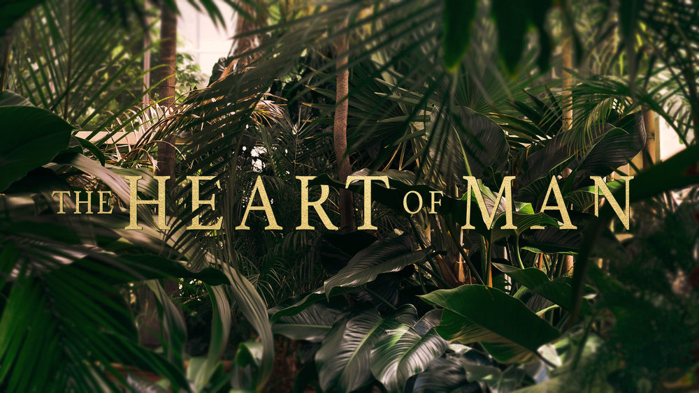 the heart of man.jpg