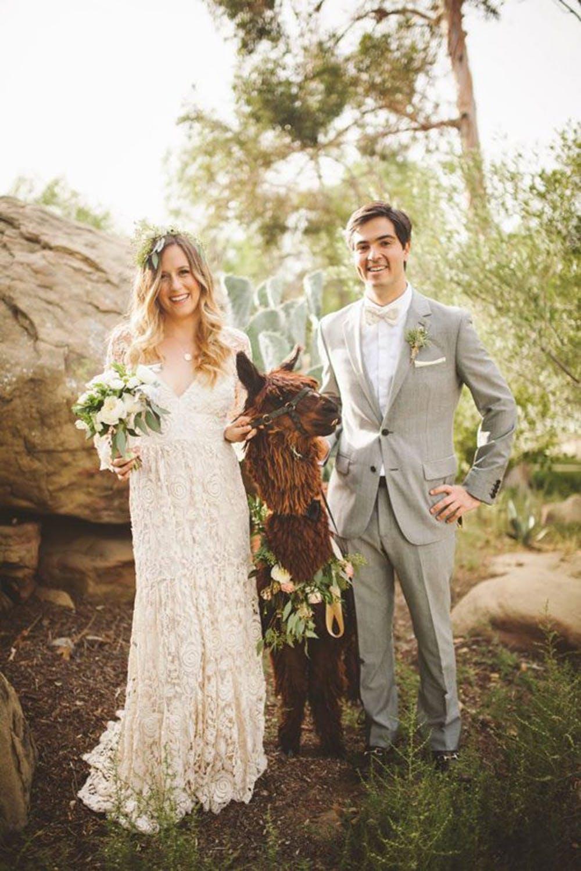 an-alpaca-almost-stole-the-spotlight-in-this-hummingbird-nest-ranch-wedding-22-600x900-645x968.jpg