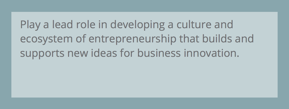 Initiative #3- Entrepreneurship & Innovation