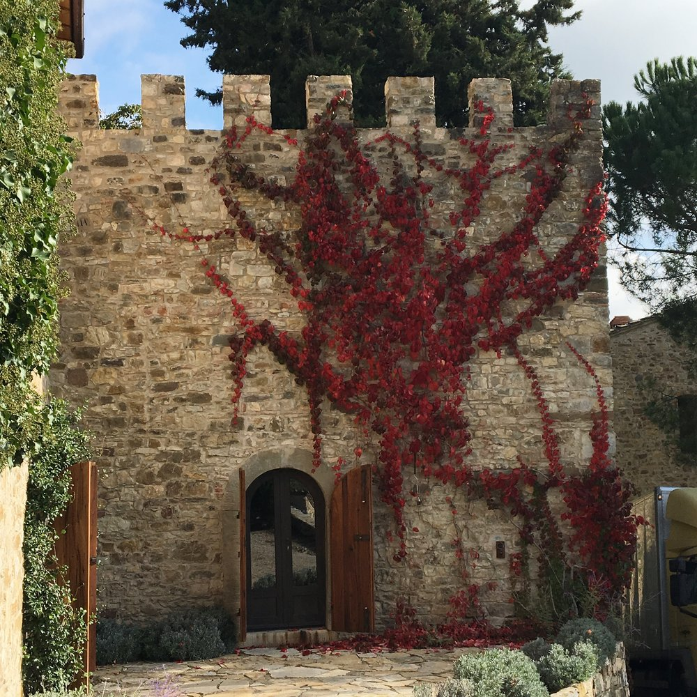 Autumn begins in Chianti
