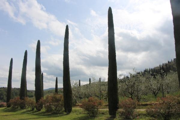 A Sunday afternoon ride through Toscana