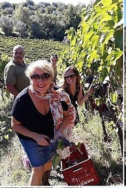 Workin the Vendemmia with my chica, Cassandra from  Travel Italian Style . Photo Credit:  KM Zero Tours