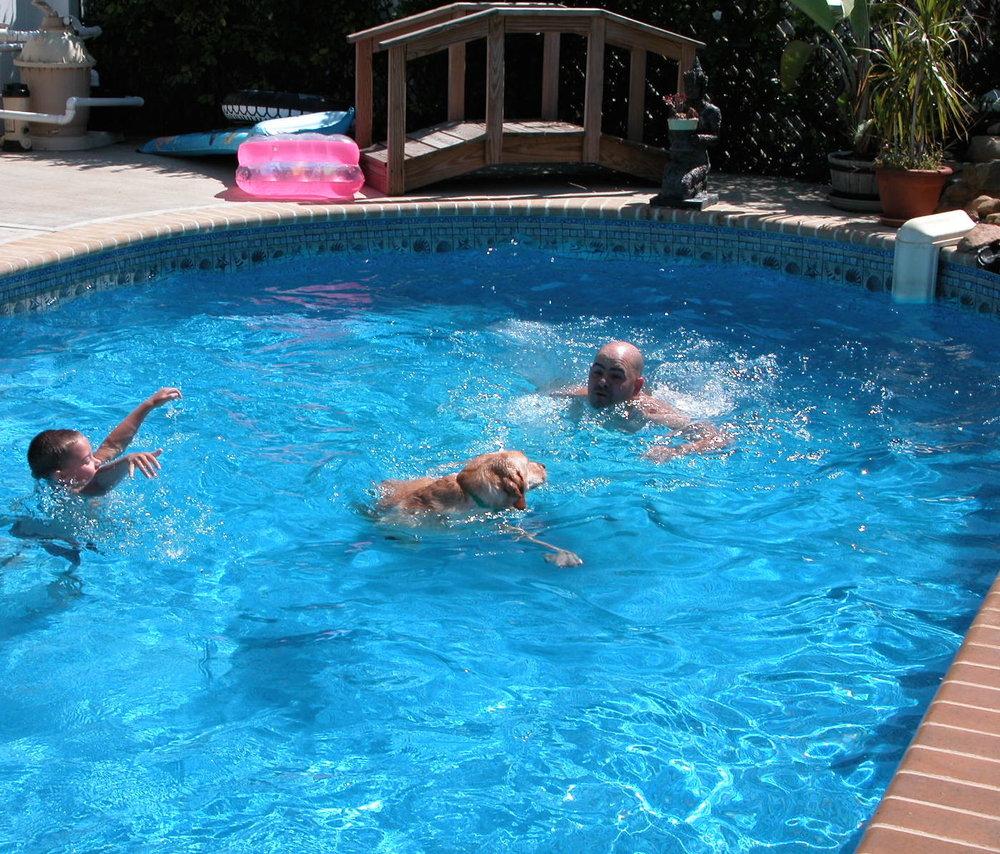 Molly in the pool.jpg