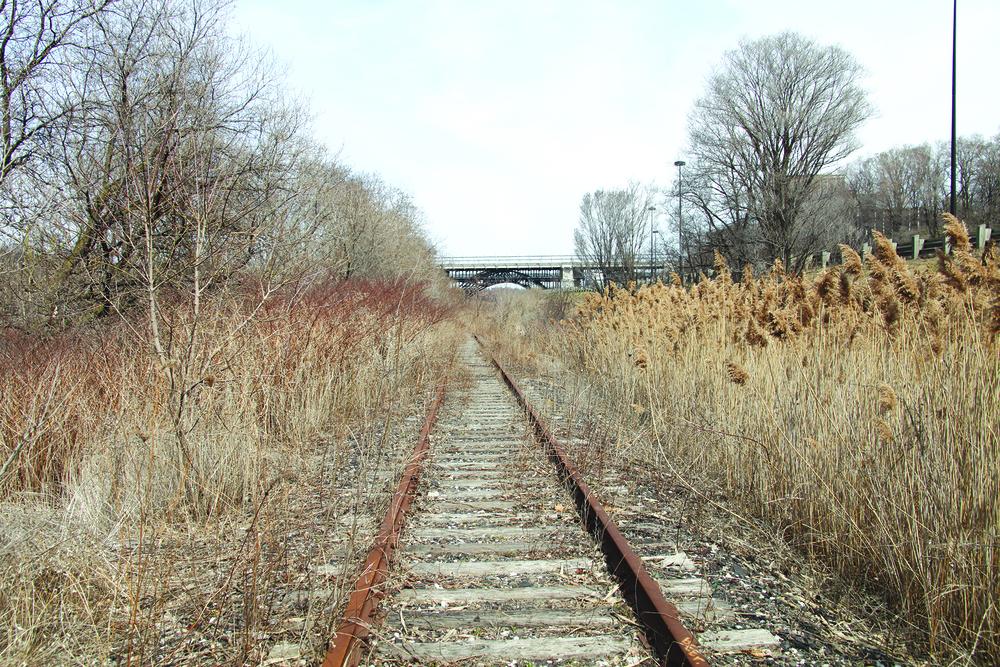train 8.jpg