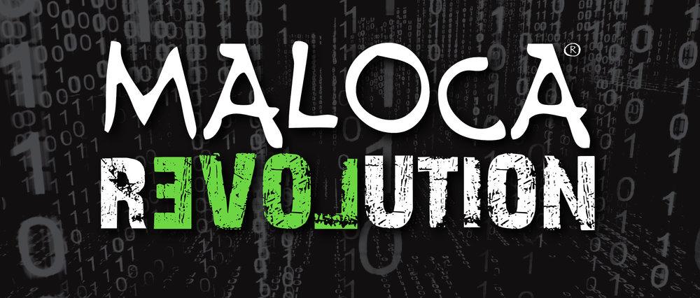 MALOCA Revolution Matrix.jpg