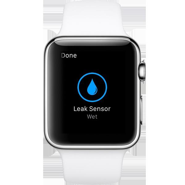 leak-sensor.png