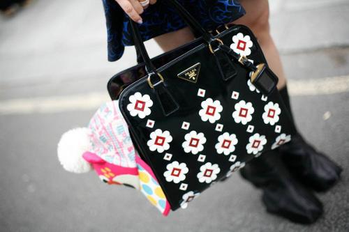 bags-13.jpg