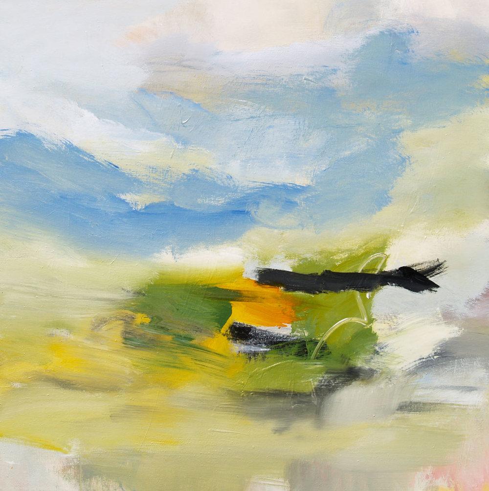 50x50.landscape-2010.04-WEB.jpg