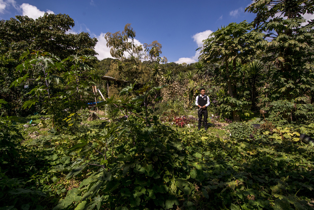 A teacher shows us the Chacaya Organic School garden, Cahcaya, Santiago Attitlan, Guatemala