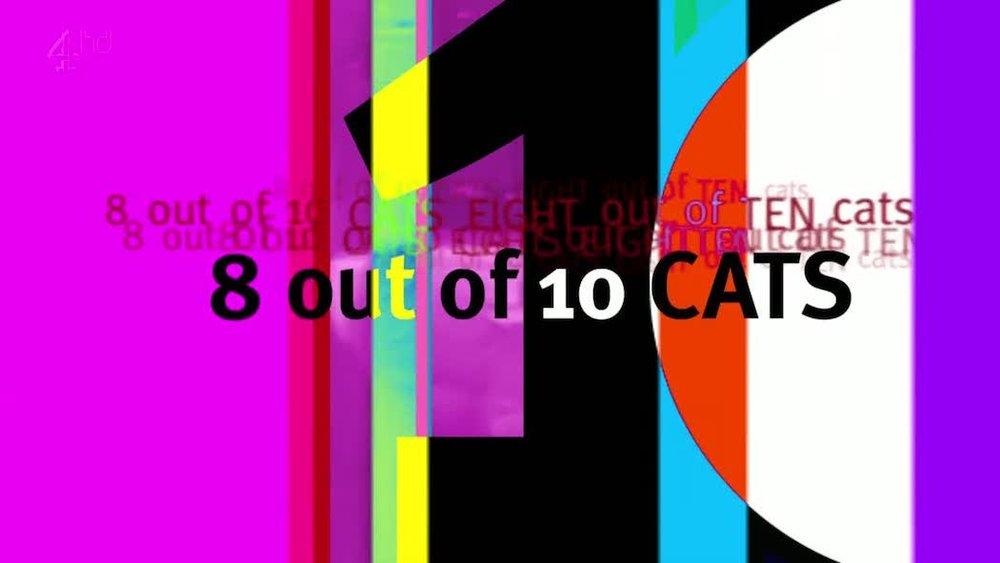 8outof10cats3.jpg