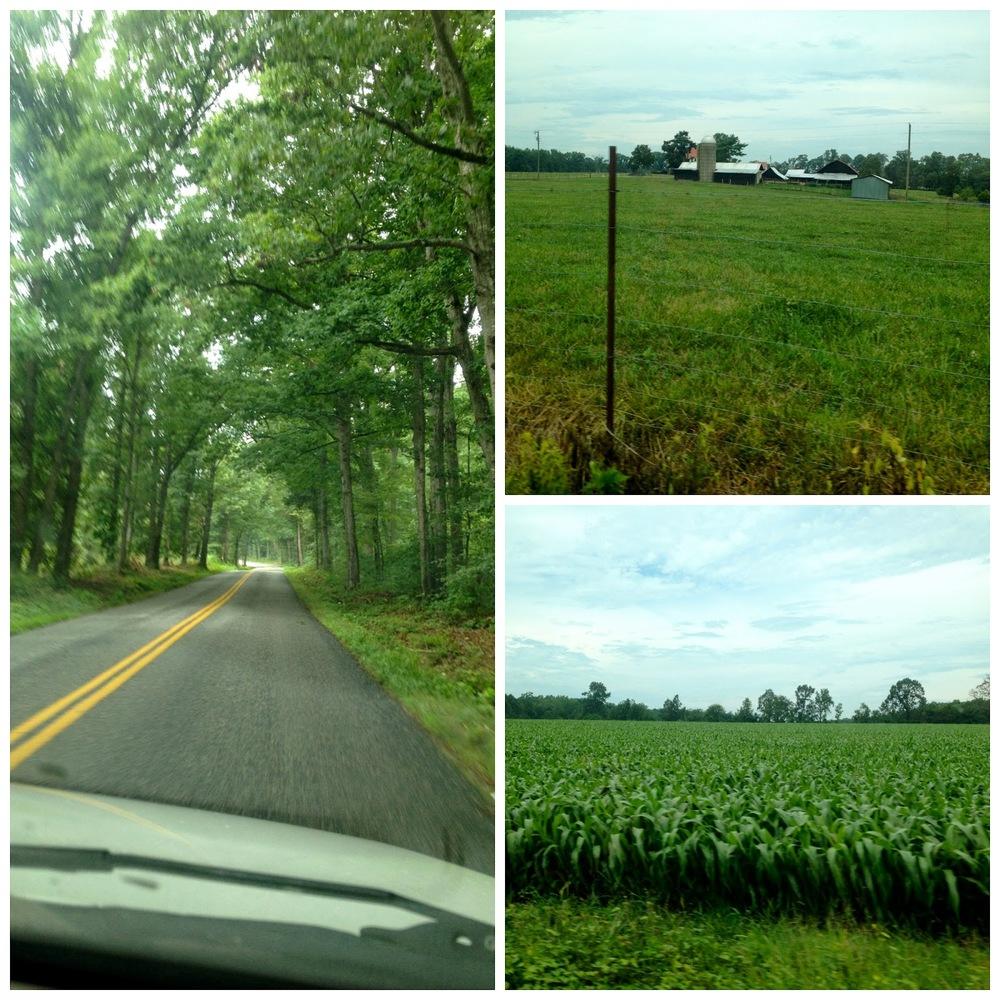 Virginia+Drive.jpg
