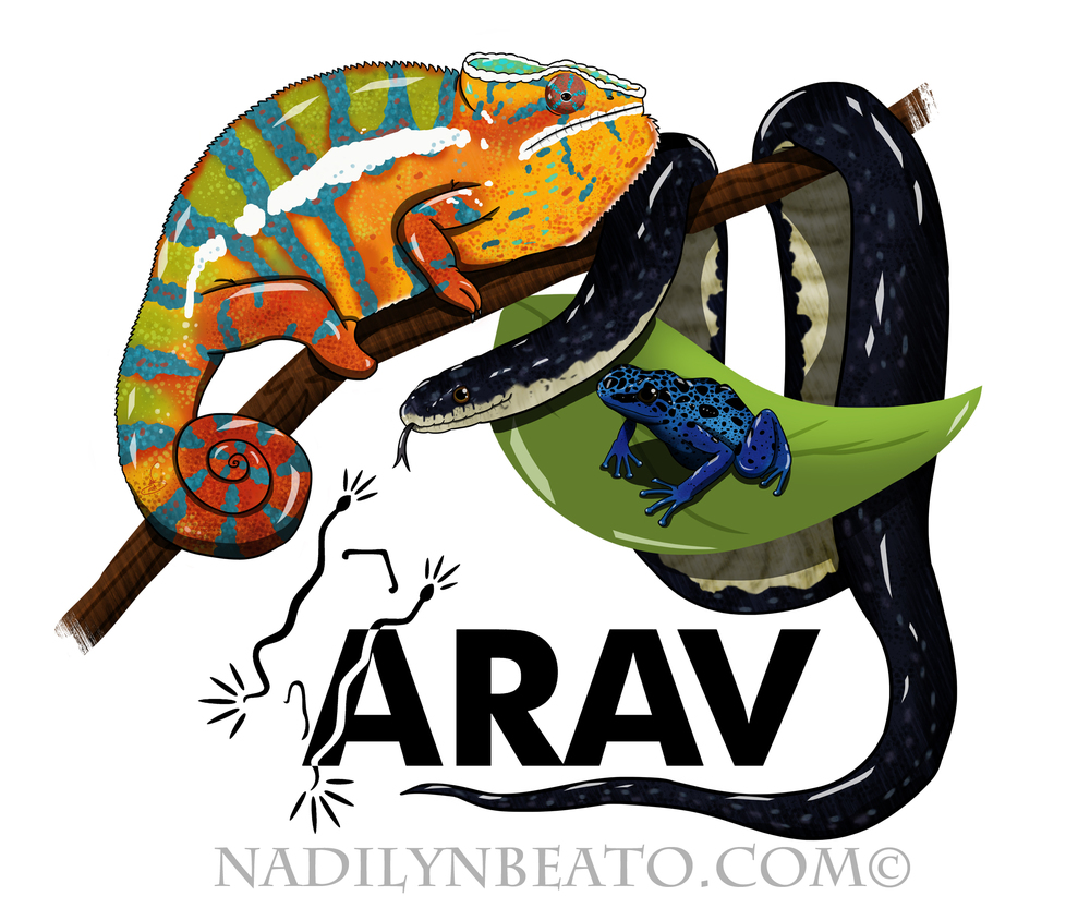 ARAV.jpg