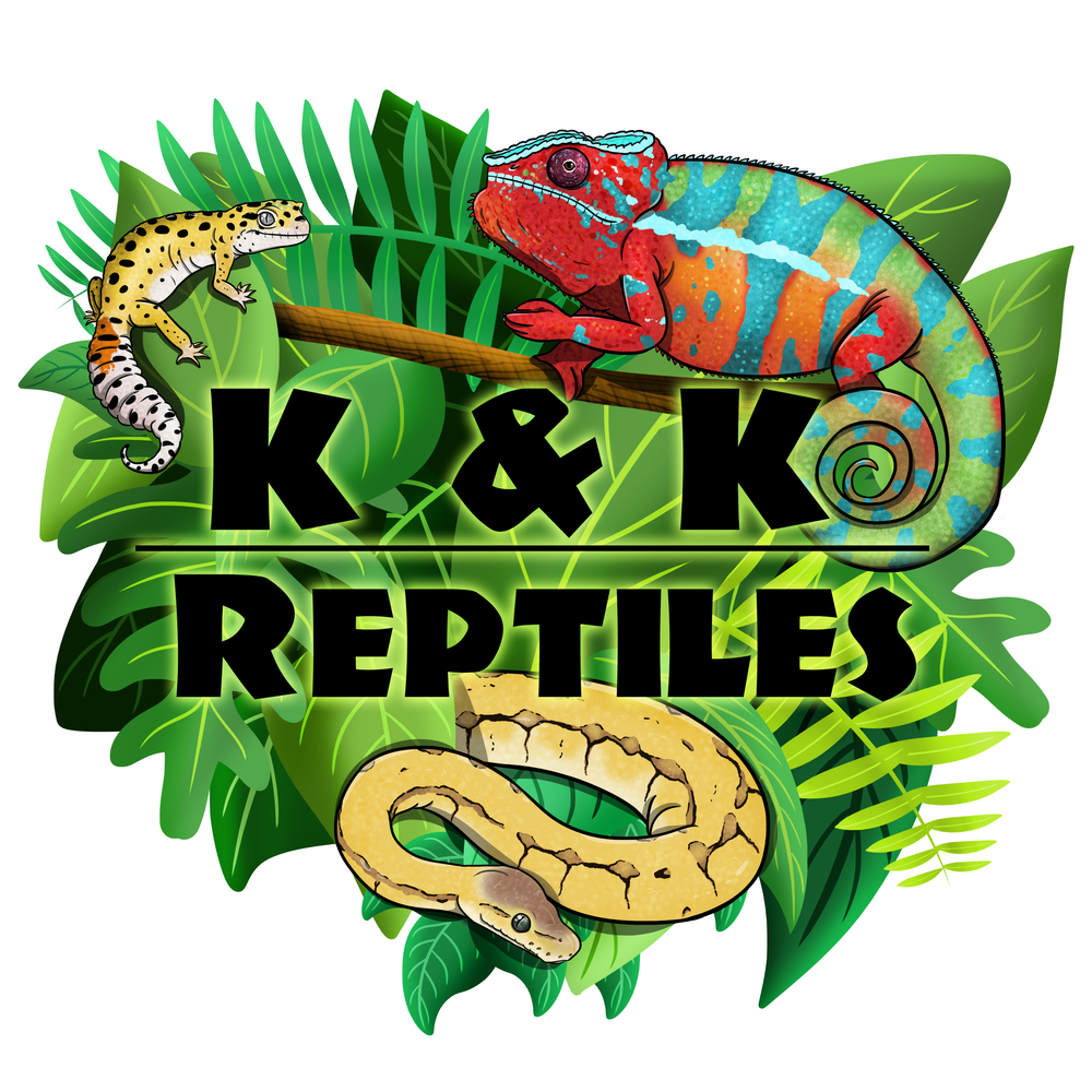 Logo Design for K & K Reptiles