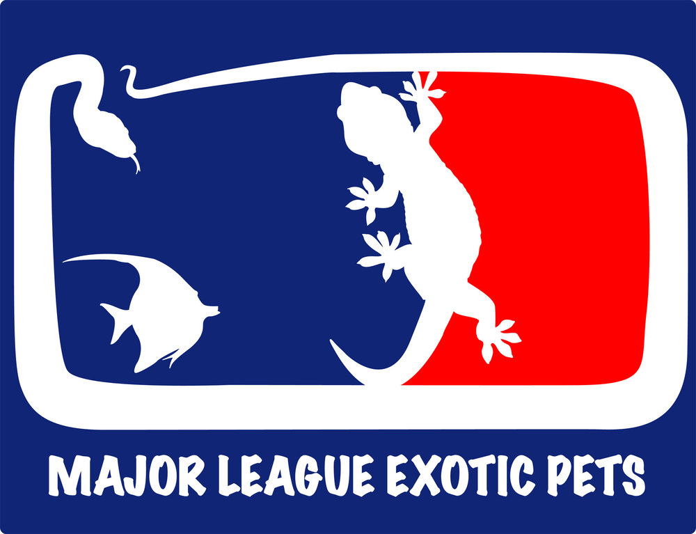 Logo Design for Major League Exotic Pets
