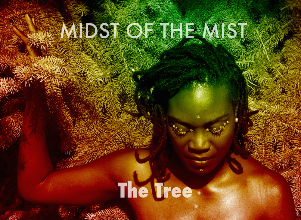 Midst of Mist | The Tree