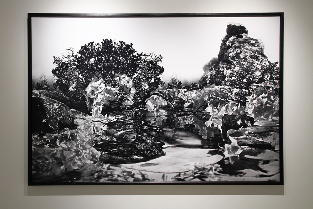 Almost Paradise, 2012 chromogenic print, 166 x 244 cm. (installation view)