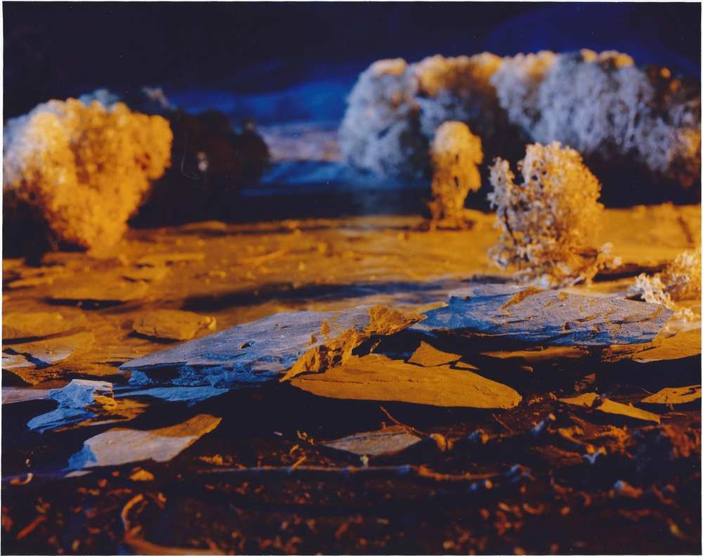 Tundra Divided, 1995 Chromogenic print, 127 x 142 cm. Collection: CMCP