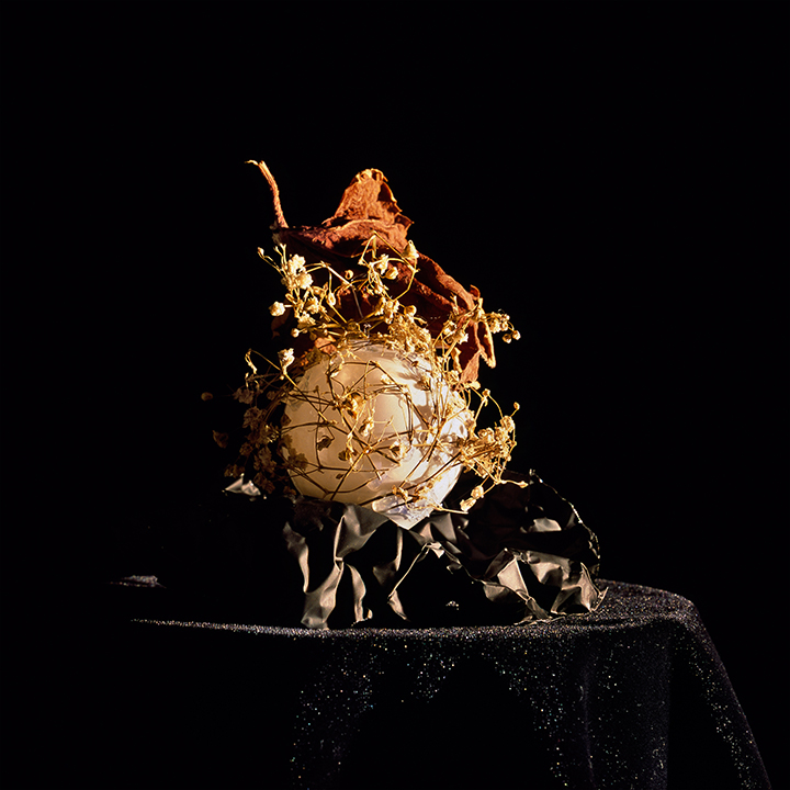 Still Life #2, chromogenic print mounted on Dibond 42x38 cm