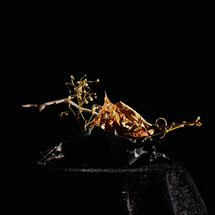 Still Life #7, chromogenic print mounted on Dibond 42x38 cm
