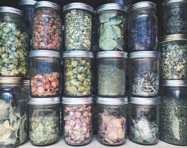 Herbal beauties! Most of TSC's herbs are stored in large bins in my office and workspace, but I keep some out in jars to play with and recipe test!