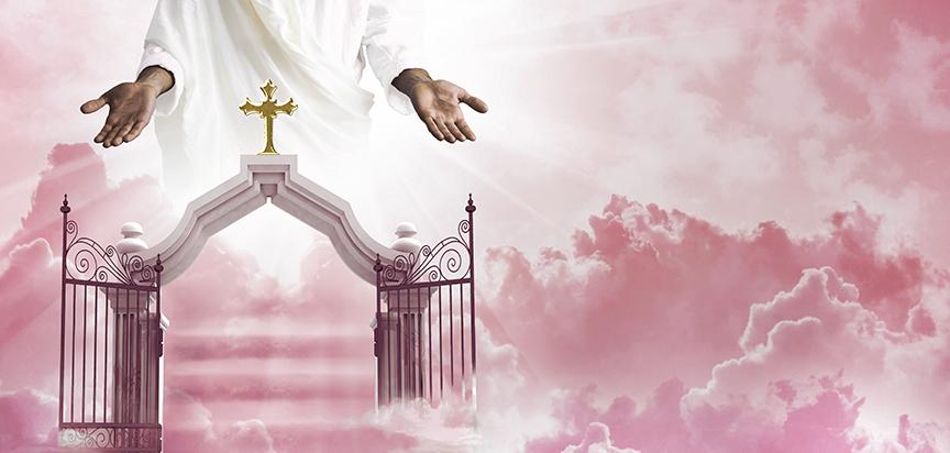Heavens-Gate-Pink-III-Cap-Panel-Insert.jpg